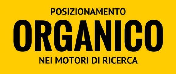 posizionamento organico web